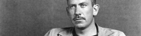 Cover Les meilleurs livres de John Steinbeck
