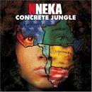 Pochette Concrete Jungle