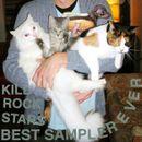 Pochette Kill Rock Stars Best Sampler Ever