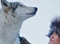Cover Les_meilleurs_films_avec_des_loups