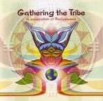 Pochette Gathering the Tribe
