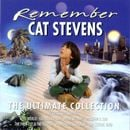 Pochette Remember: The Ultimate Collection