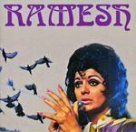 Pochette Ramesh