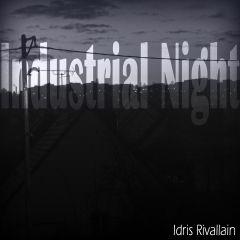 Pochette Industrial Night