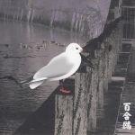 Pochette Yurikamome: 13 Japanese Birds, Pt. 3