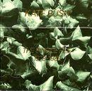 Pochette The Single File 1978-1983