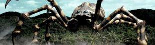 Cover Les insectes et araignées au cinema