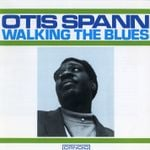 Pochette Walking the Blues