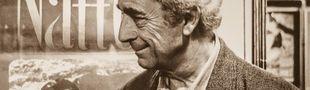 Cover Les meilleurs films de Michelangelo Antonioni