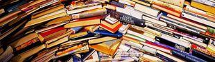 Cover Liste de livres qui s'agrandit de jour en jour/ PAL