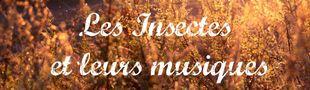 Cover Les Insectes et leurs musiques
