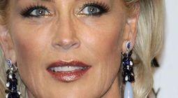 Cover Les meilleurs films avec Sharon Stone