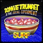 Pochette Surf