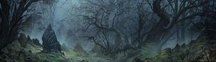 Cover C'est tellement beau une forêt... hop, ça sera la pochette de mon disque !