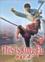 Affiche This Is Kung Fu