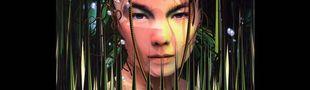 Cover Les meilleurs morceaux de Björk