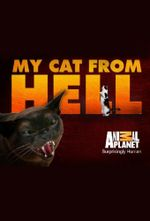 Affiche My Cat From Hell