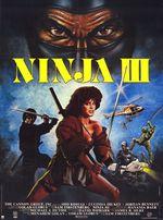 Affiche Ninja 3