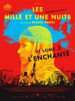 Affiche Les Mille et Une Nuits - Volume 3 : L'Enchanté