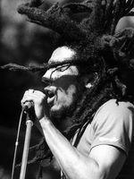 Logo Bob Marley & The Wailers