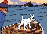 Cover Les_meilleures_BD_Tintin