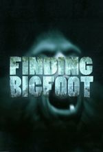 Affiche Finding Bigfoot