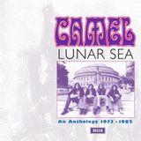 Pochette Lunar Sea: An Anthology 1973-1985