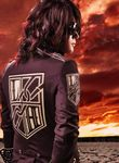Logo Linked Horizon