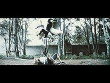 Video de Kill Bill : Volume 1