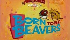 screenshots Born to Be Beavers