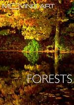 Affiche Moving Art : Forests