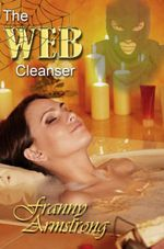 Couverture The Web Cleanser