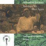 Pochette Southern Journey, Volume 4: Brethren, We Meet Again