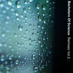 Pochette Remixes vol. 2