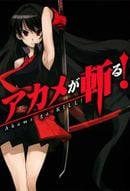 Affiche Red Eyes Sword : Akame ga Kill !