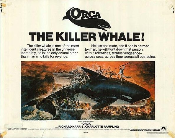 """Résultat de recherche d'images pour """"Orca affiche"""""""