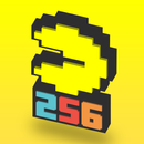 Jaquette Pac-Man 256