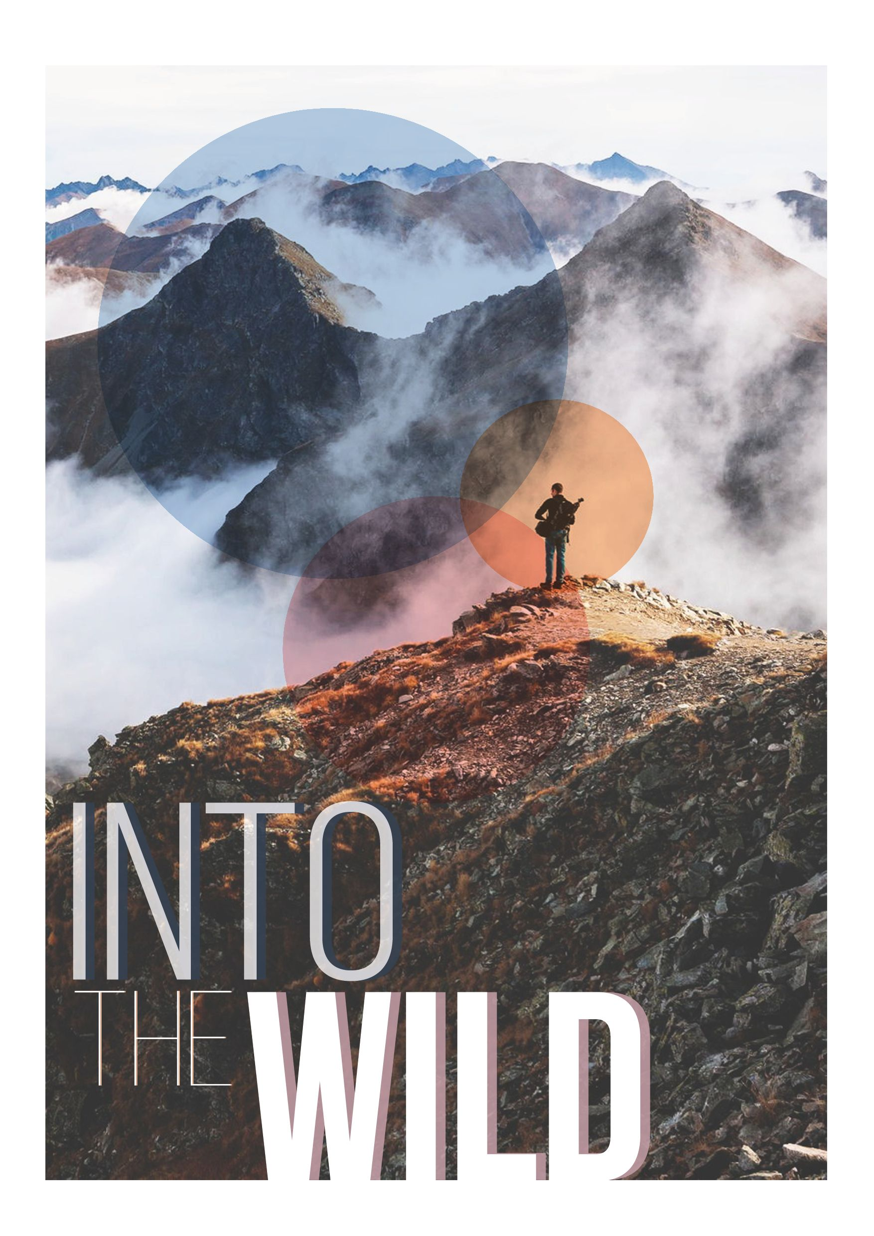 into the wild could a driven