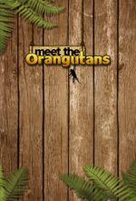 Affiche Meet the Orangutans