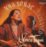 Pochette Inca Taqui