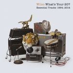 Pochette What's Your 20? Essential Tracks 1994-2014