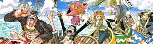 Cover One Piece