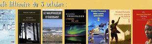 Cover Café littéraire des Amis du Tsurugi du samedi 3 octobre, livres présentés :