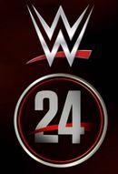 Affiche WWE 24