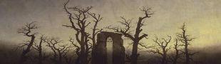 Cover C'est nunuche et sadique à la fois : le gothique des origines... et un peu plus loin