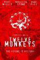 Affiche L'Armée des 12 singes