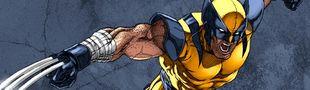 Cover Les meilleures histoires de Wolverine