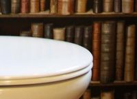 Cover Les_livres_qui_se_lisent_aux_toilettes