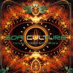 Pochette Goa Culture, Volume Two