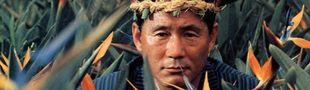 Cover Ces films asiatiques qu'il faut vraiment que je regarde